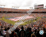 Dolphins Stadium Photo