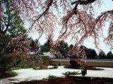 Rock Garden, Shoho-Ji Temple, Japan Photographic Print
