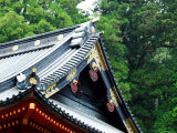 Futara-San Shrine Photographic Print