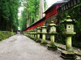 Approach of Futara-San Shrine Photographic Print