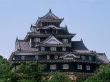 Okayama Castle Photographic Print
