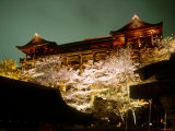 Cherry Blossoms and Kiyomizu Temple Photographic Print
