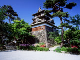 Maruoka Castle Photographic Print
