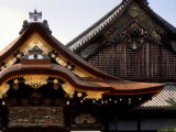 Nijo Castle Photographic Print