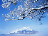 Mt. Fuji from Lake Yamanaka Photographic Print