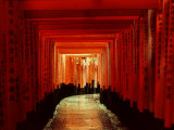 Tunnel of Torii-Arches, Fushimi Inari Shrine, Kyoto, Japan Photographic Print