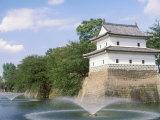 Shibata Castle Photographic Print