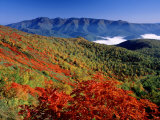 Mt. Daisetsu in Autumn Photographic Print