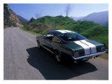 1966 Shelby GT350 Giclée-tryk af David Newhardt