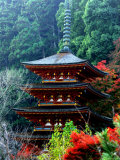 Autumn Leaves at Hase Temple Photographic Print