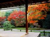 Garden of Nanzenji Temple Photographic Print