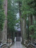 Koyasan Photographic Print