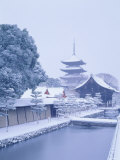 Toji Temple Photographic Print