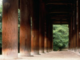 Pillars of Toshodaiji Temple Photographic Print