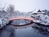 Shinsen-En Garden Fotografie-Druck