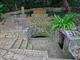 Shikna-En Garden Photographic Print