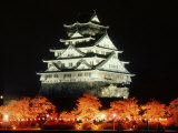 Night View of Osaka Castle with Cherry Blossoms, Japan Photographic Print