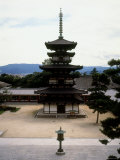 East Pagoda of Yakusiji Temple Photographic Print