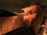 Shuri Castle by Night Photographic Print