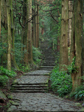 Kumano Photographic Print