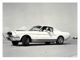 First Shelby Mustang GT350 Giclée-Druck
