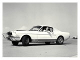 First Shelby Mustang GT350 Giclee Print