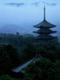 Pagoda of Koufukuji Temple Photographic Print
