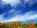 Mt. Norikura Photographic Print