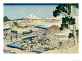 36 Views of Mount Fuji, no. 44: The Tea Plantation of Katakura in the Suruga Province Giclée-Druck von Katsushika Hokusai