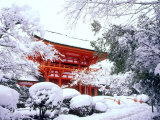 Kamigamo Shrine in Snow, Kyoto, Japan Photographic Print