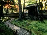 Moss Garden, Saiho-Ji Temple (Kokedera), Kyoto, Japan Photographic Print