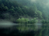 Lake and Forest Photographic Print