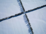 Aerial View of Snow Field Photographic Print
