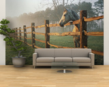 A Horse Watches the Mist Roll in over the Fields Wall Mural – Large by Richard Nowitz