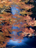 Waterfalls and Autumn Leaves Photographic Print
