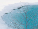 Lake in Winter Photographic Print