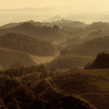 Sunrise Over Tuscany II Prints by Shelley Lake