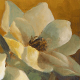 Magnolias Aglow at Sunset II (detail) Prints by Lanie Loreth