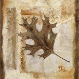 Fall I Print by Patricia Quintero-Pinto