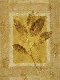 Golden Glow Leaf I Poster by Lanie Loreth