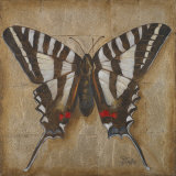 Butterfly I Posters by Patricia Quintero-Pinto
