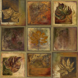 Leaf Square II Prints by Patricia Quintero-Pinto