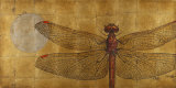 Dragonfly on Gold Print by Patricia Quintero-Pinto