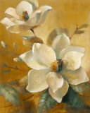 Magnolias Aglow at Sunset I Posters by Lanie Loreth
