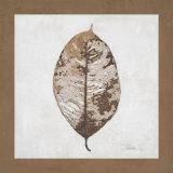 Beauty of Simplicity I Print by Patricia Quintero-Pinto