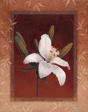 Tiger Lily Print by Vivien Rhyan