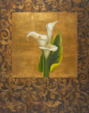 Calla Lily with Arabesque I Prints by Patricia Quintero-Pinto