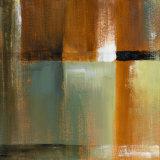 Sonoran Shadows IV Prints by Lanie Loreth