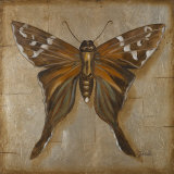Brown Butterfly Art by Patricia Quintero-Pinto