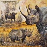 Safari I Posters af Peter Blackwell